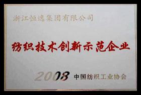 主要荣誉X5.jpg